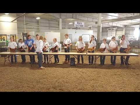 2017 Lancaster County Super Fair - 4-H Poultry Show (beginning of show)