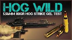 Lipstick On A Pig or Hog Wild? 5.56mm 80gr Hog Strike Gel Test