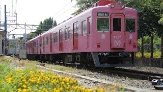 【前面展望ノーカット】 南海 加太線 「めでたい電車」 和歌山市 ⇒ 加太