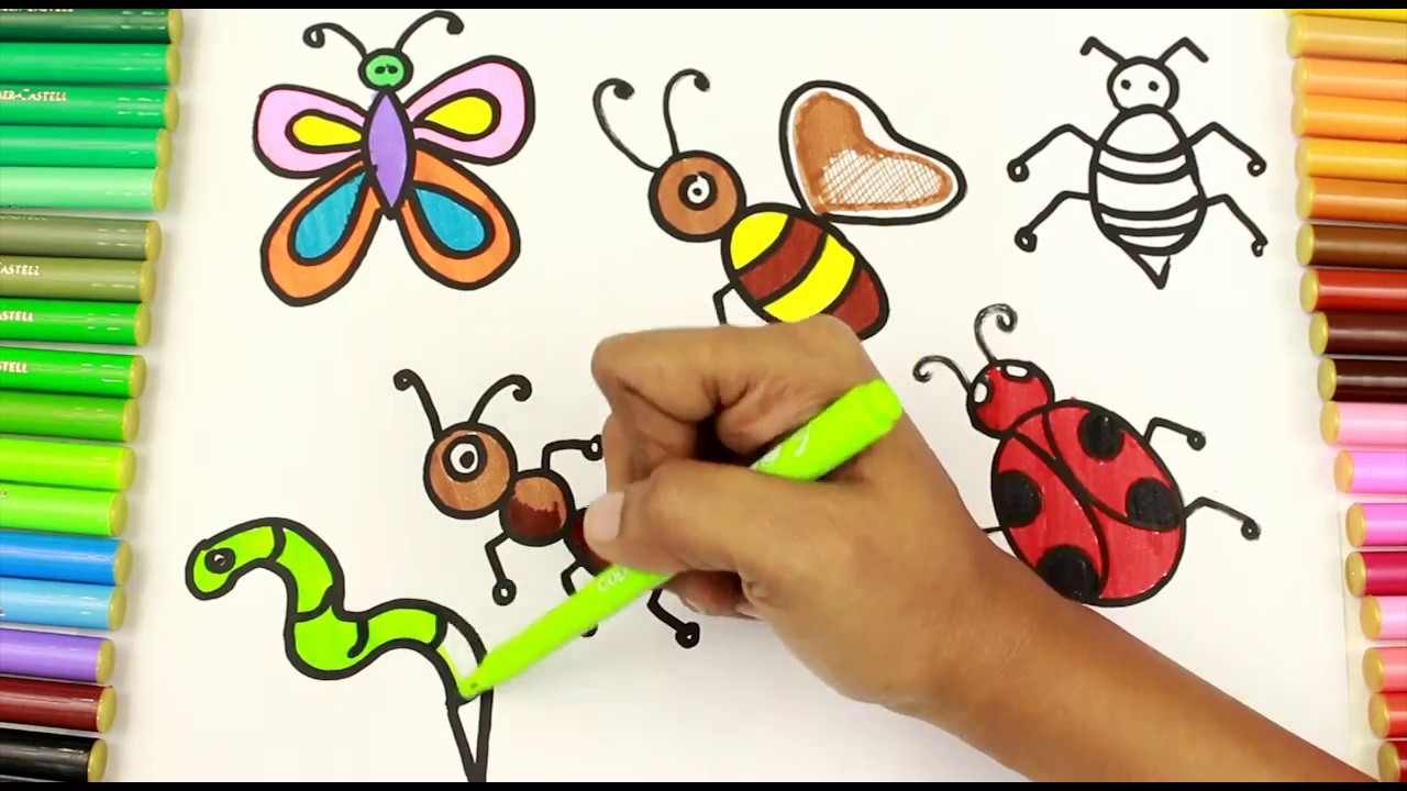 coloring and drawing insects ant beetle butterfly earthworm