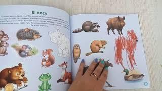 Обзор книги окружающий мир малыша с наклейками и расскрасками