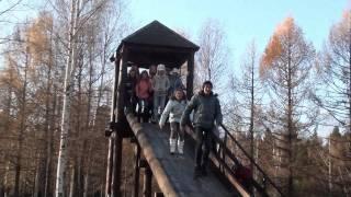 ФОРТУНА-ШОУ   КОСТРОМА - 2011
