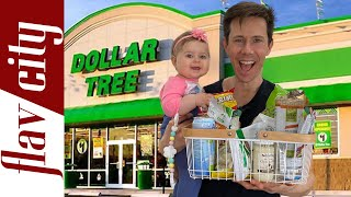 EPIC Dollar Tree Haul - Healthy Food At Extreme Budget Prices!