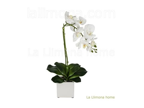 Plantas artificiales con flores orquideas artificiales for Orquideas artificiales