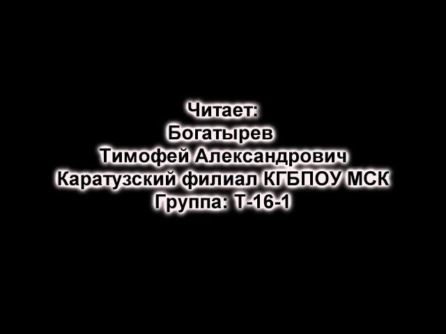 Изображение предпросмотра прочтения – ТимофейБогатырев читает произведение «Встреча» М.И.Цветаевой