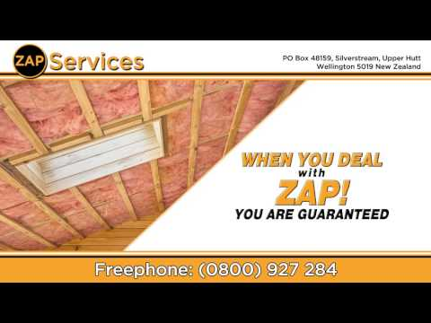 Zap Services   42366 Insulation