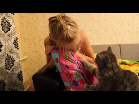 кошка жалеет хозяйку