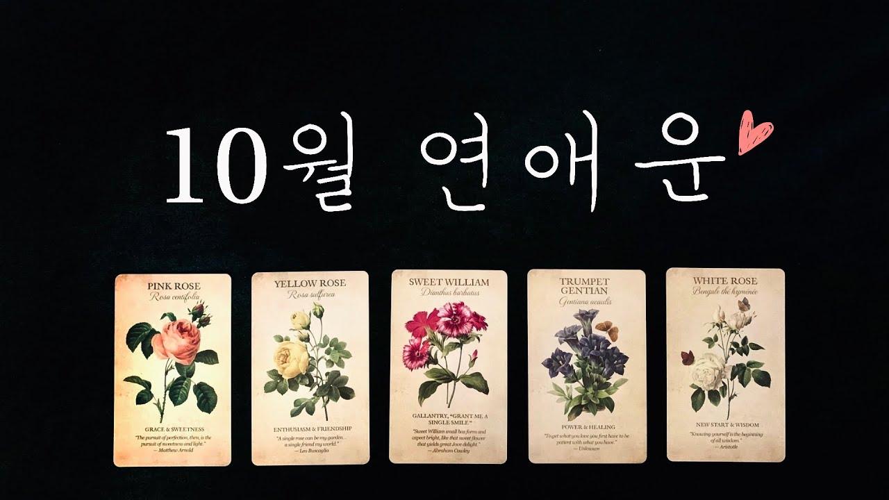 [타로카드/연애운] 10월의 사랑이야기💘 솔로/커플