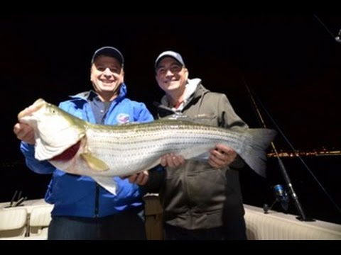 Giant Striper caught in Hudson River & Atlantic Blues May 22nd  2015