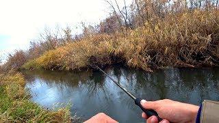 Таких щук в ручье, маленькой речке я не ожидал!!! Рыбалка на спиннинг.