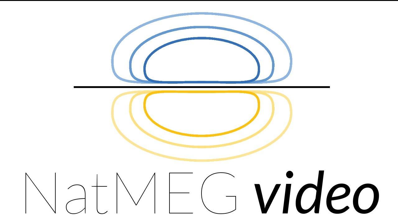 NatMEG lecture: Beamforming EEG and MEG data by Robert Oostenveld