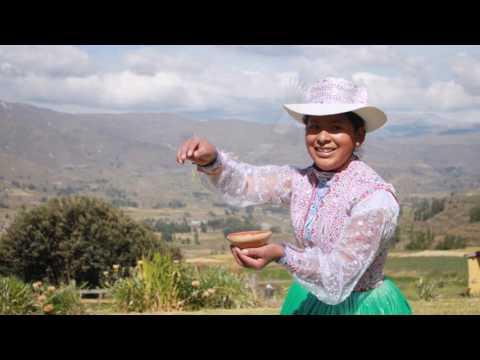 Giardino Tours Perú