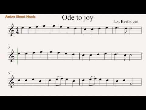 Ode to Joy- Flute sheet music