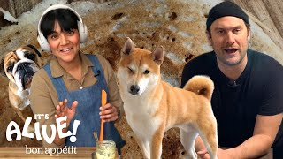 Brad and Sohla Make Dosas | It's Alive @ Home | Bon Appétit
