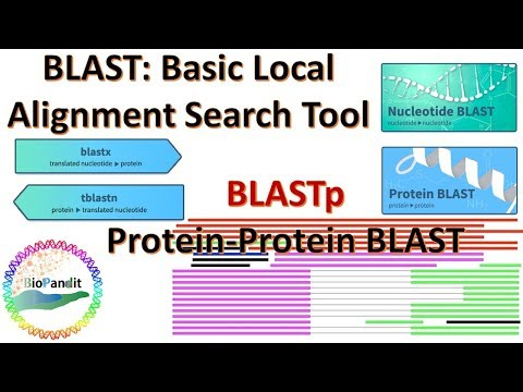 Basic Local Alignment Search Tool: Protein BLAST (BLASTp)