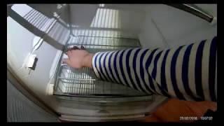 видео Заправка холодильника фреоном: этапы работы