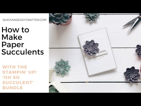 Paper Succulents with the Oh So Succulent bundle from Stampin' Up!