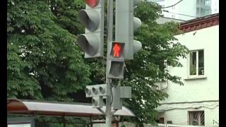 Уроки безопасности - Пешеход всегда прав