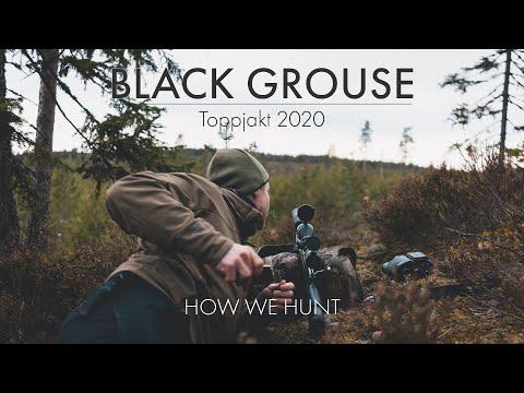 BLACK GROUSE HUNTING (TOPPJAKT 2020) - HOW WE HUNT