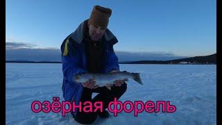 Alaska Рыбалка Под водой снимает камера SONY x3000