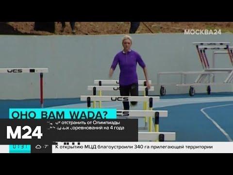 Комитет WADA рекомендовал отстранить РФ от соревнований на 4 года - Москва 24