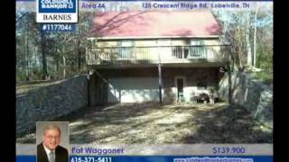 home for sale in lobelville tn 139900