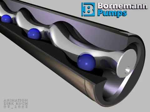 bornemann pumps