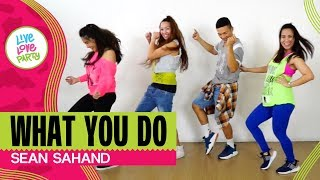 What You Do by Sean Sahand | Live Love Party™ | Zumba® | Dance Fitness