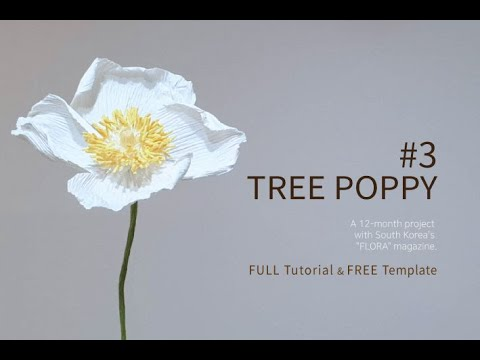 how to make crepe paper flowers with Flora magazine #3. tree poppy free template PDF download