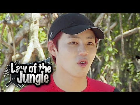 """Ha Sung Woon """"There Was An Alligator!!! I Saw It"""" [Law Of The Jungle Ep 326]"""