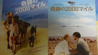 奇跡の2000マイル TRACKS (2015) 映画チラシ ミア・ワシコウスカ thumbnail