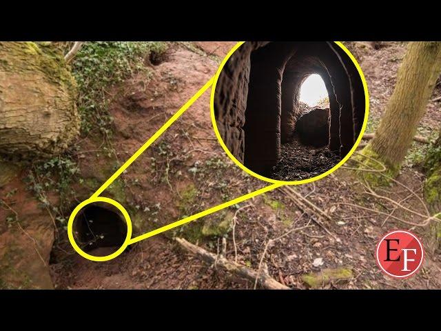 جحر ارنب يكشف لمزارع فقير سر مدفون منذ اكثر من 700 عام