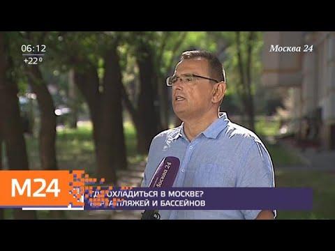 Погода в столице может повторить рекорд вековой давности - Москва 24
