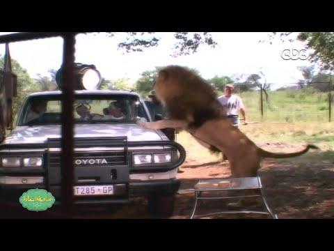 كواليس المشهد الشهير لأحمد عيد واحمد السقا في فيلم افريكانو | لن تصدق