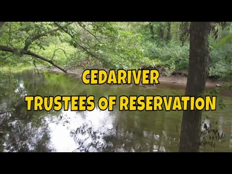 Cedariver Trustees of Reservation ~ Wildflowers ~ Horses ~ Nature Walk