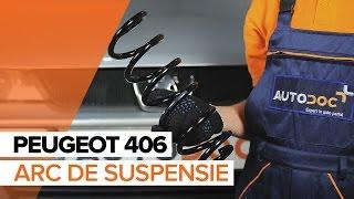 Schimbare Filtru ulei PEUGEOT 406 Break (8E/F) - video instrucțiuni
