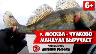 Зимняя рыбалка 2020 на Москва реке в районе Чулково Ловля на спиннинг