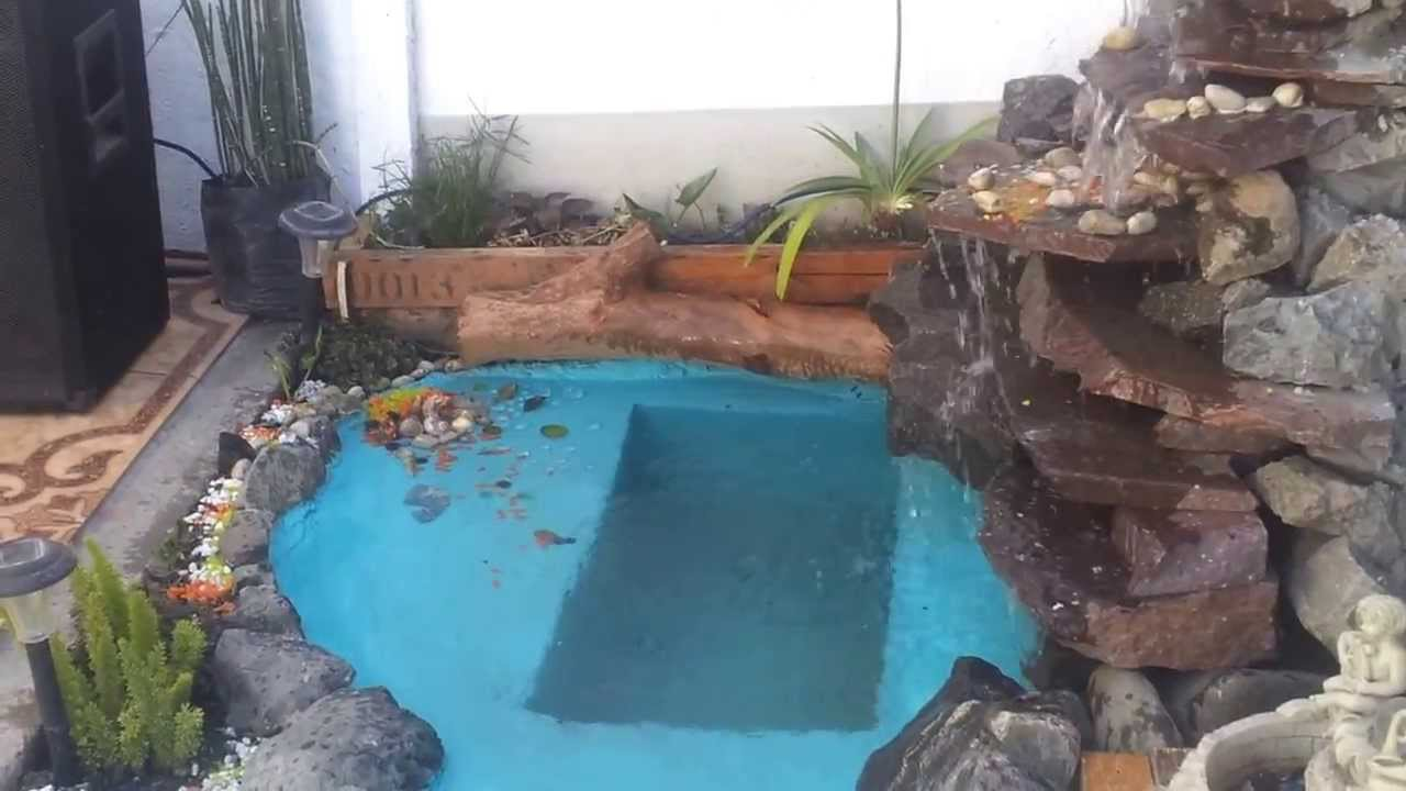 Estanque y cascada peces koi youtube for Carpas para acuario
