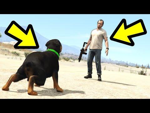 GTA 5 - Chop vs. Trevor! (Who Wins?)