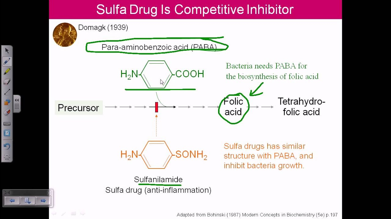 Enzyme inhibitor (competitive inhibition) - YouTube