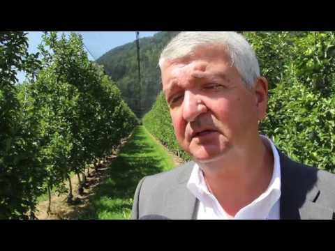 Vorstellung Akteure im Südtiroler Obstbau