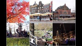 Groningen 2014-2019