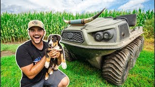 taking-my-puppy-to-my-farm-for-the-first-time-bad-idea
