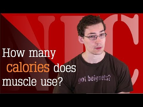 NIC 46c: How many calories does muscle use?