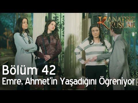 Kanatsız Kuşlar 42. Bölüm - Emre, Ahmet'in yaşadığını öğreniyor