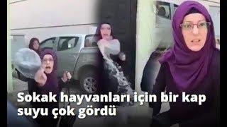 Konya'da sokak hayvanları için bırakılan suyu fırlatıp atan bayanlar!