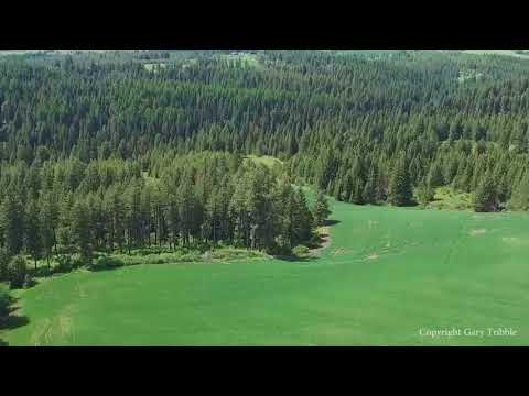 White Pine Flats - North Idaho 61 +/- Acre Beautiful Parcel - Property For Sale
