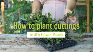 How to Plant Cuttings or Plugs in Al's Flower Pouch