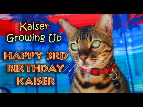 Kaiser Growing Up - Happy Birthday, Kaiser!