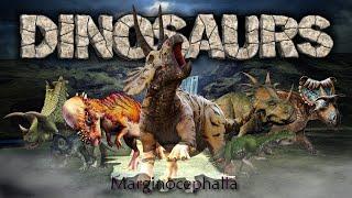 Dinosaurs VI : Ornithischia - Marginocephalia